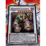 GUERRIER COLOSSAL ( 5DS1-FR043 )