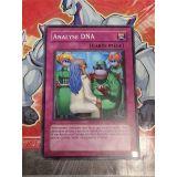 ANALYSE DNA ( CSOC-FR078 )