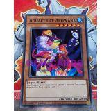 AQUACTRICE AROWANA ( DLCS-FR092 )