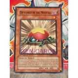 DEVOREUR DE NIVEAU ( DP09-FR011 )