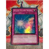 BALISE PLUME NOIRE ( DP11-FR029 )