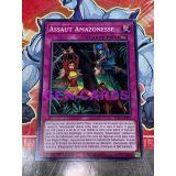 ASSAUT AMAZONESSE ( LDS1-FR025 )