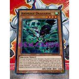 ANDRAKE DRAGARDE ( MP20-FR011 )