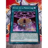 RITUEL DE LA PREDICTION ( OP02-FR025 )