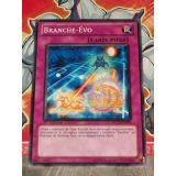 BRANCHE-EVO ( ORCS-FR074 )