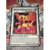 DRAGON ASCENDANT ROUGE ( SAST-FR099 )