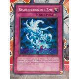 RESURRECTION DE L AME ( SDWS-FR035 )