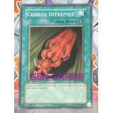 CHARGE INTREPIDE ( SKE-FR036 )