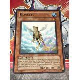 RAINETTE ( SOI-FR025 )