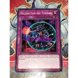 MALEDICTION DES TENEBRES ( SR06-FR039 )