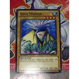AQUA MADOOR ( YSKR-FR002 )